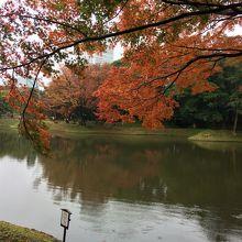 中央にある一番大きな池