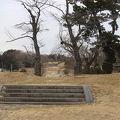 写真:多賀城跡
