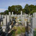 写真:秋山好古墓所