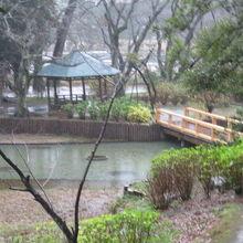 出雲大社 浄の池