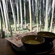 竹林を見ながら抹茶
