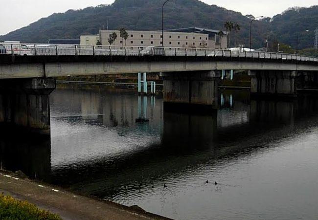 街中を流れている川。