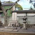 写真:板垣退助の墓