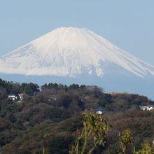 祇園山見晴台から見える富士山。