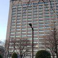 写真:宮城県庁