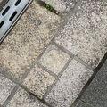 写真:ハートの石畳