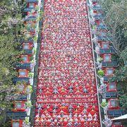 勝浦ひな祭りの有名ポイント