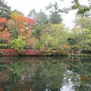 別荘地の中の静かな池