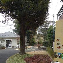 旧山崎家別邸庭園