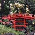 写真:小石川後楽園 通天橋