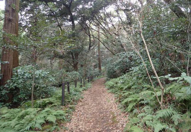 お林遊歩道