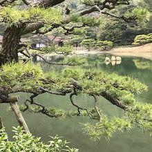 栗林公園 仙磯 (蓬莱島)