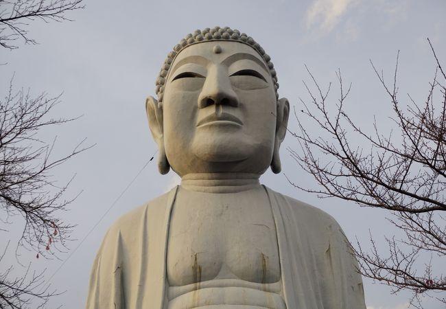 布袋の大仏(御嶽薬師尊)