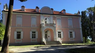 Dvorac Petrovica