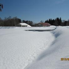 イモリ池からビジターセンター。冬の散歩もできます。