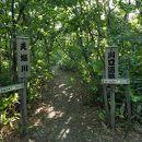 天塩町川口遺跡風景林