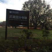 広大な国分寺の跡地
