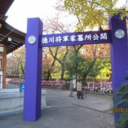 歴史彩る徳川家のお墓