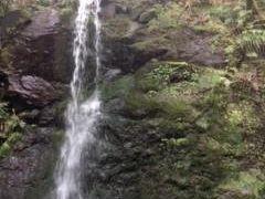 湯河原温泉のツアー