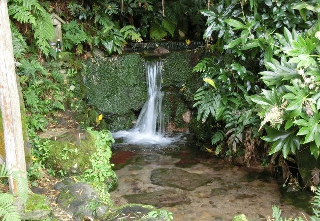 茅葺の水車小屋が建つ名水の池