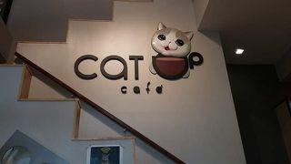 ザ キャット カフェ