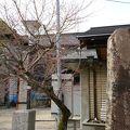 写真:知立神社 養正館
