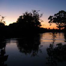 アマゾンのサンセット、星空、天の川、流れ星が最高です。