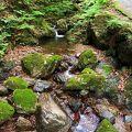 都内から気軽に行けるマイナスイオンを浴びれる滝