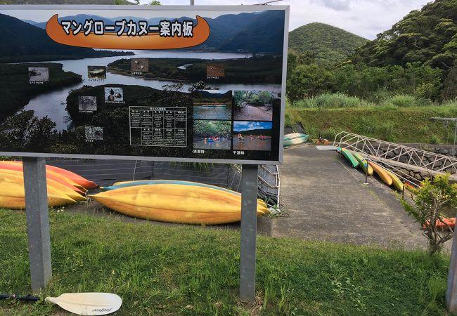 初めてのカヌー体験はとても楽しかったです