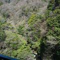 写真:早川鉄橋(出山の鉄橋)