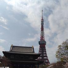 sakuraと東京タワーと