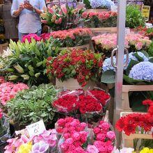シンゲルの花市