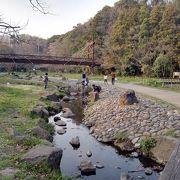 引地川源流域に広がる親水公園