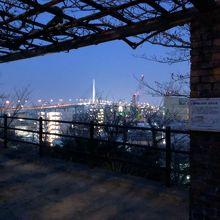 公園からの福岡市内夜景