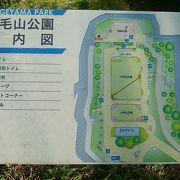 野毛坂を上り切った一面に広がる公園も桜一色!