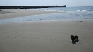 野間海水浴場
