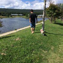 湖の周りを散歩