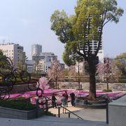 桜並木との調和
