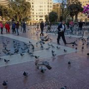 バルセロナの観光中心。グラシア通りも,ランブラス通りもここからはじまっています。