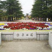 広くて綺麗な公園