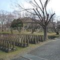 写真:真田山陸軍墓地