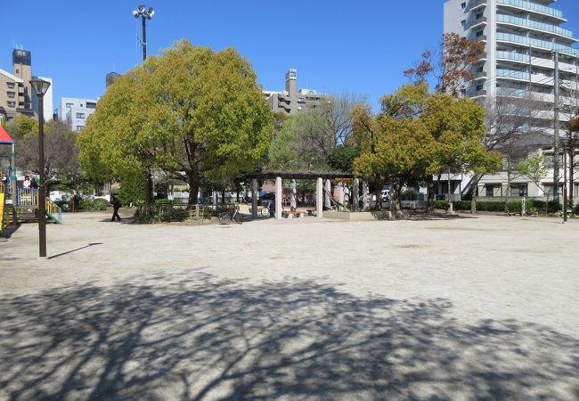 日当たりのよい公園です