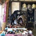 写真:三峰お犬茶屋 山麓亭