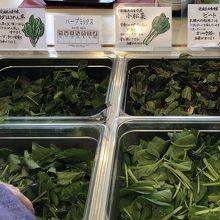 地元の野菜。