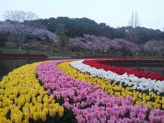 舘山寺温泉のツアー