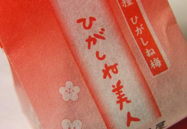 梅菓子本舗松野屋