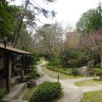 1500坪の日本庭園があります。