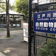 江戸川区自然動物園/西葛西