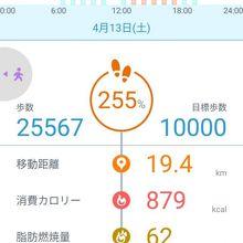 19.4Km~歩き過ぎですか、今日は。