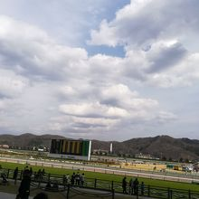 福島競馬場